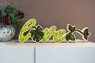 LOVE, legno e lichene naturale stabilizzato, moss wall, green design, muschio stabilizzato a manutenzione zero