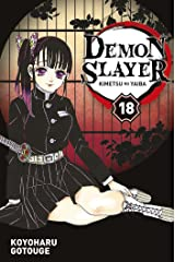 Demon Slayer T18 Format Kindle