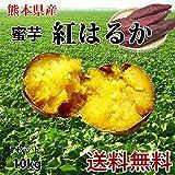紅はるか さつまいも 10kg 熊本県産 サツマイモ 紅蜜芋