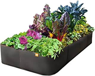 EZ GRO Garden 2 ft X 4 ft Victory 8 MED Rectangle Raised Garden Bed Grow Your OWN Best Choice No Assembly