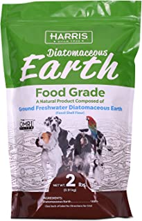 diatomaceous earth for mange in dogs