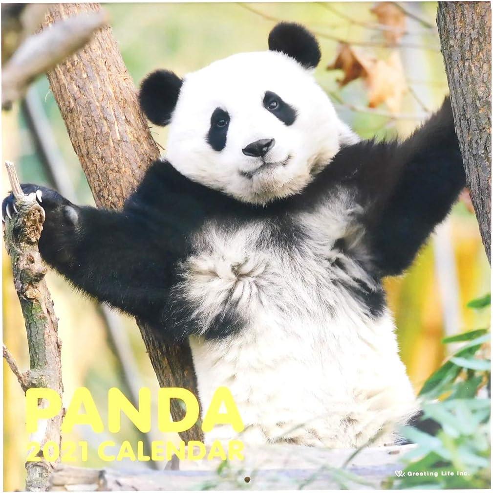 Japanese Calendar Boston Mall Greeting Life 2021 Size LP Panda Wall Super beauty product restock quality top