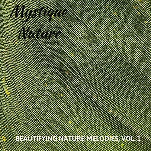 Calm Singing Birds Zone, White Noise Meditation & 自然音