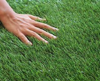 人工芝 ロール 1m×10m 芝丈20mm 「 FINE DUO 」 (#9831333) 芝生 ガーデニング DIY 工作 遊び 留め具付き固定ピン付 アウトドア