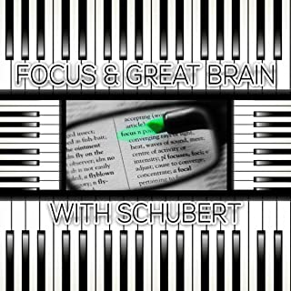 Focus & Great Brain with Schubert – Brainstorm, Classical Music for Deep Concentration, Logical Thinking, Exam Study Music, Increase Brain Power, Mindfulness, Study Skills