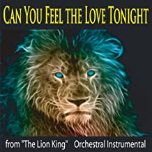 Best can you feel the love tonight instrumental lion king Reviews