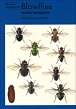 Blowflies (Naturalists' Handbook Series)