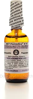 NET Remedies #11 Visceral Polarity- Nervous and Digestive Systems 60ml