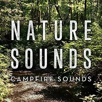 Campfire Sounds (Short Version)