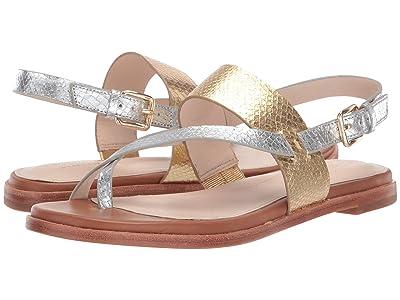 Cole Haan G.OS Anica Thong Sandal (CH Gold/Silver Metallic Snake Print) Women