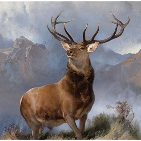 Awesome Majestic Stag Poster Print Size A4 Wild Animal Poster Gift #14361 A4