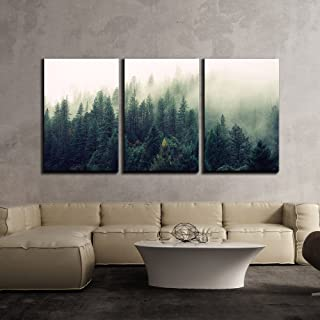 wall26 - 3 Piece Canvas Wall Art - Landscape with Trees in Mist - Modern Home Decor Stretched and Framed Ready to Hang - 24