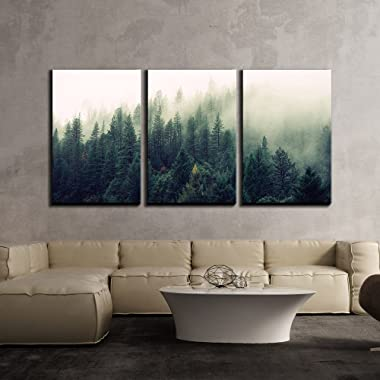 wall26 - 3 Piece Canvas Wall Art - Landscape with Trees in Mist - Modern Home Decor Stretched and Framed Ready to Hang - 24 x36 x3 Panels