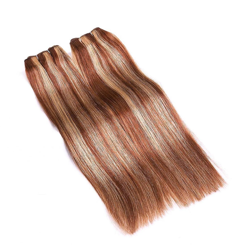 サンドイッチ線形伝統的BOBIDYEE 女性用ヘアカーテンリアルヘアストレートヘア混色は結び目なしで染めることができますヘアカーテン複合ヘアレースウィッグロールプレイングかつら (サイズ : 24inch)