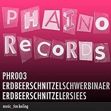 Schwer Binaer / Er Sie Es (PHR003)