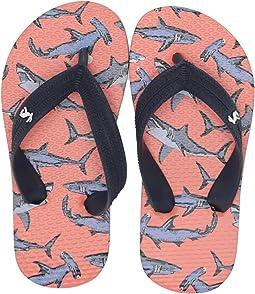 Orange Sharks