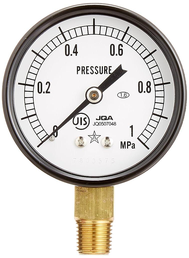 確実電気の宿泊施設SANEI 【上水道用水圧計セット】水圧計セット R93S
