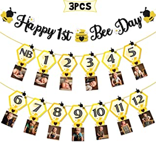 3PCS Happy Bee Day Party Decorations, Bumble Honey Bee 1st Birthday Baby Photo Banner for Newborn to 12 Months, Monthly Milestone Photograph Bunting Garland, First Birthday Celebration Decorations