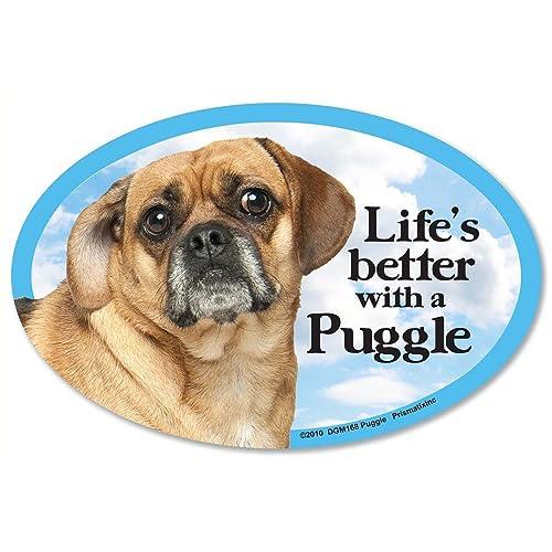 Puggle Dog: Amazon com