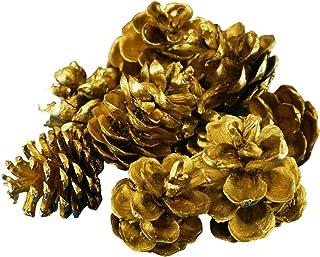 松ぼっくり 金 20個 カラースタイル ナチュラル パインコーン 天然素材 松かさ クリスマス ツリー DIY の装飾 松笠