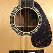 Broches de Pont en /éb/ène avec Coquille dormeau pour Accessoires de Guitare Folk Folk acoustiques Drfeify Cevilles de chevalet de Guitare