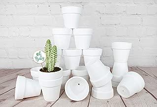 My Urban Crafts 20 Pcs White Terra Cotta Pots Mini 2.5 inch Succulent Pots Small Clay Pot White Ceramic Pots Cactus Planter White Flower Pot Great for Plant Crafts, Wedding Favors (Matte White Bisque)