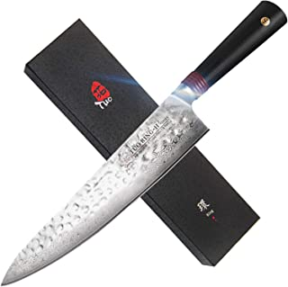 TUO Chef's Knives - Damascus Kitchen Chef Knife - Japanese AUS10 Steel - Full Tang - G10 Handle - Ring H - TC0307H - 9.5