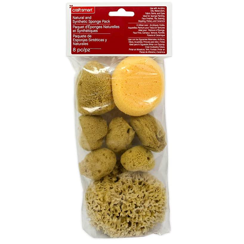 Natural & Synethic Sponges Variety Value Pack by Craft Smart jswidndbkz