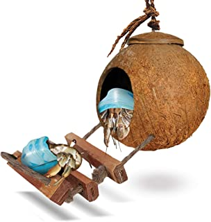 SunGrow Hermit Crab Coco Den with Ladder, Nesting Home Hide, Mini Condo for Crustaceans, Coconut Texture Provide Food for Pets, Raw Coconut Husk Hide, Durable Cave Habitat with Hanging Loop