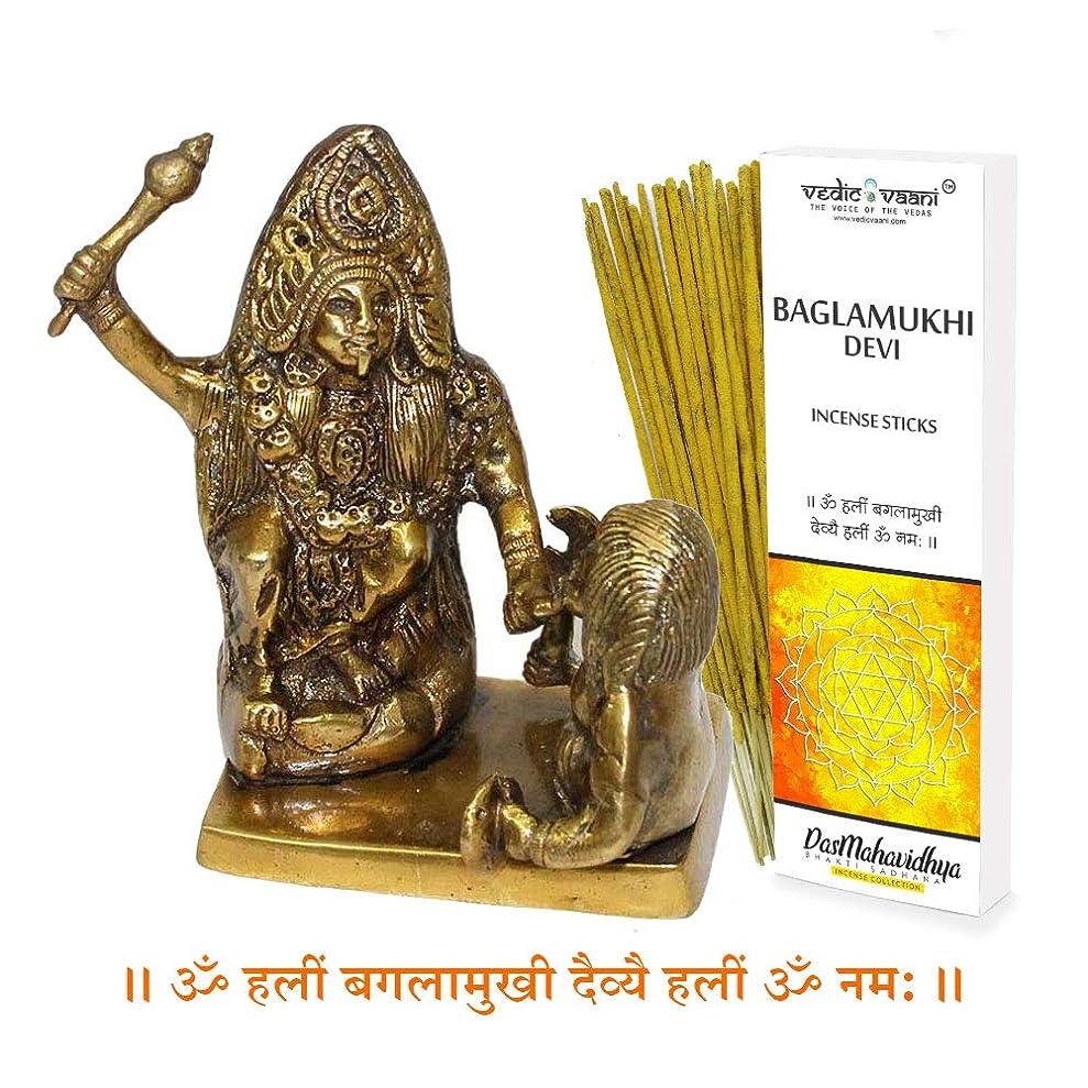土地常識夜の動物園Vedic Vaani バグラムキ像 バガラムキ香スティック付き