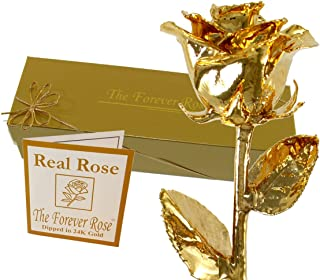 Best real rose covered in 24k gold Reviews