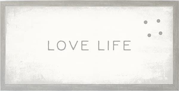 Petal Lane Framed Magnetic Canvas Wall Art Vintage Frame Love Life Home Decor 4 Magnets Included 28 X14