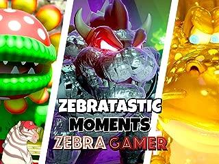 Clip: Zebratastic Moments - Zebra Gamer