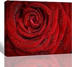 framed rose pictures