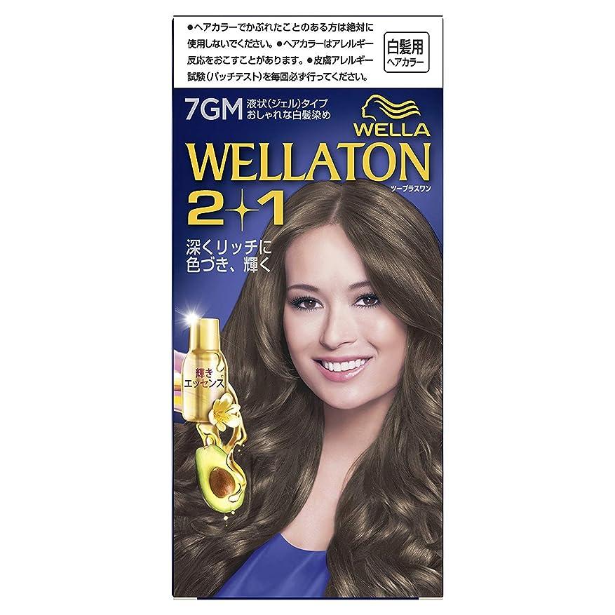 原稿一方、杖ウエラトーン2+1 液状タイプ 7GM [医薬部外品] ×6個