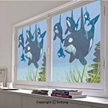 30x48 inch Decorative Static Cling Frosted Privacy Window Film,Pod of Killer Whales Swim Along a Reef Looking for Fish Prey Ocean Picture Print Glass Film for Window Glass Panels,UV Protection,Energy