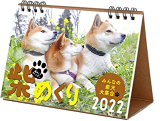 シーオーツー 柴めくり 2022年 カレンダー 卓上 CK-D22-03