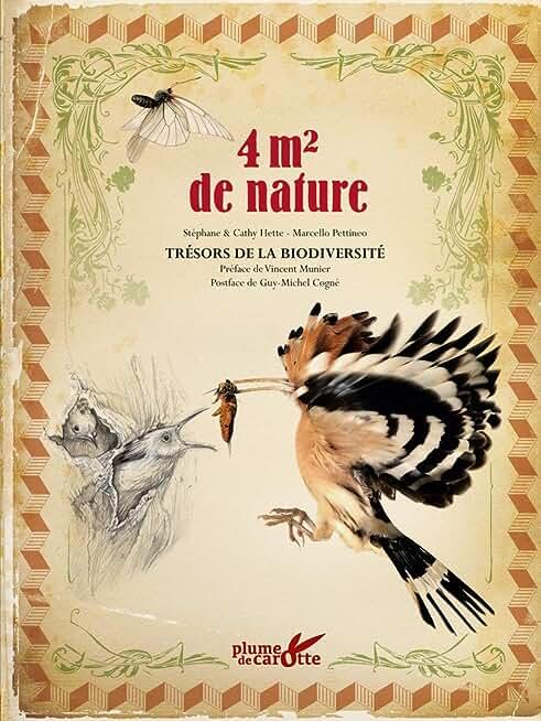 4 m2 de nature : trésors de biodiversité