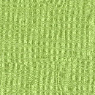 Bazzill Basics Paper 25 feuilles Scrapbooking Bling Caissette, vert