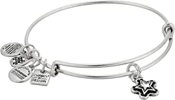 Alex and Ani Charity By Design True Wish Bangle