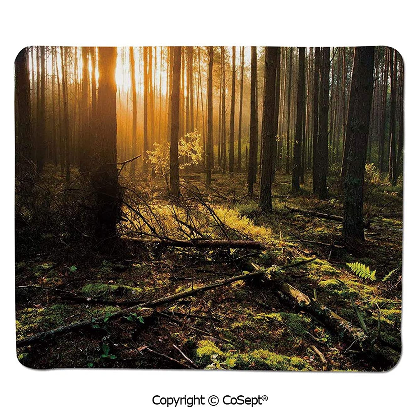 Quality Selection Comfortable Mouse Pad,Misty Morning in The Forest with Sun Rays Mother Earth Foliage Dawn Picture,Water-Resistant,Non-Slip Base,Ideal for Gaming (11.81