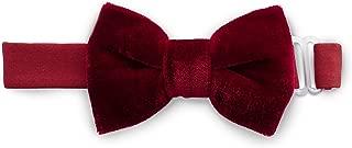 Bow Tie (Burgundy Velvet/Medium)