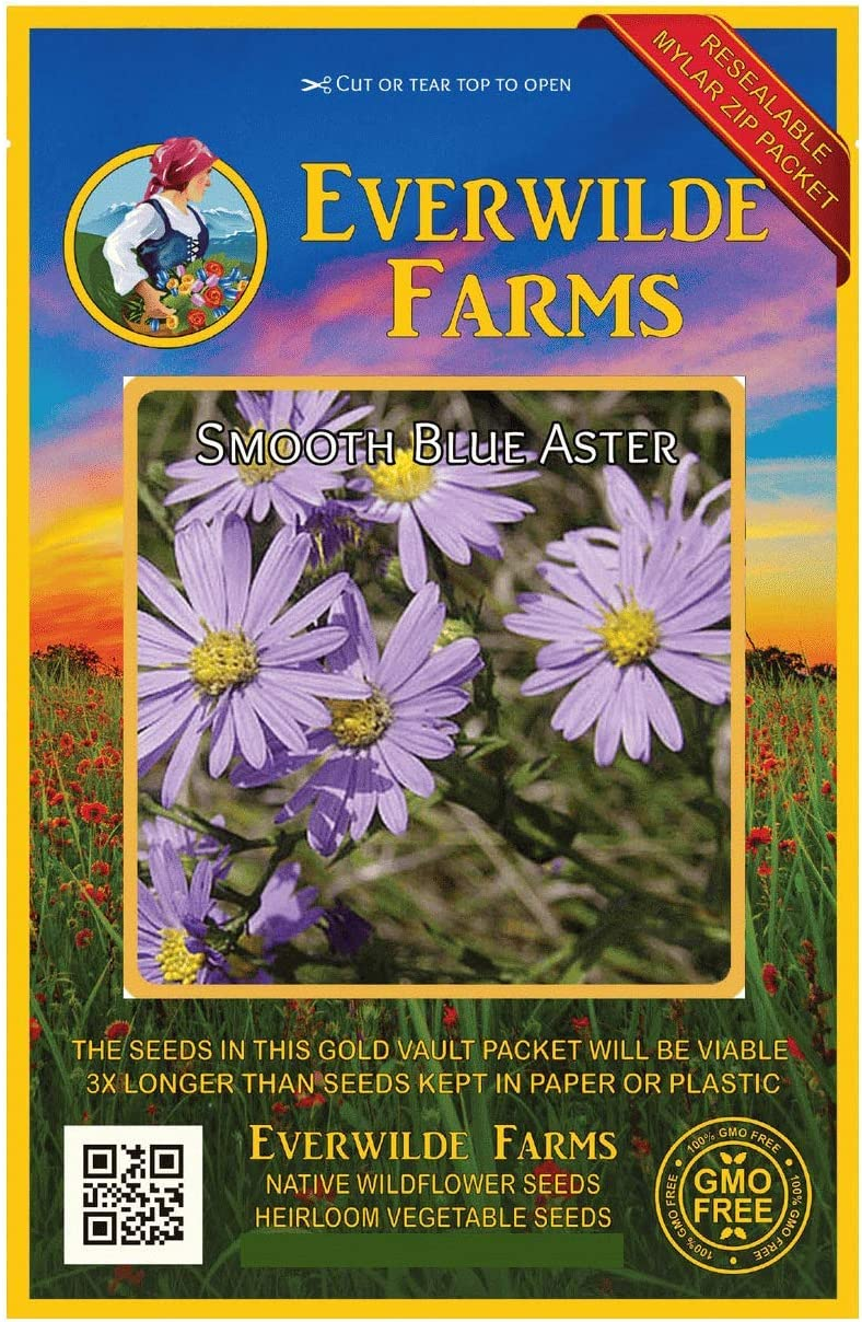 Everwilde Farms Popular products - 1 Oz Smooth Aster Seeds Blue Bargain sale Native Wildflower