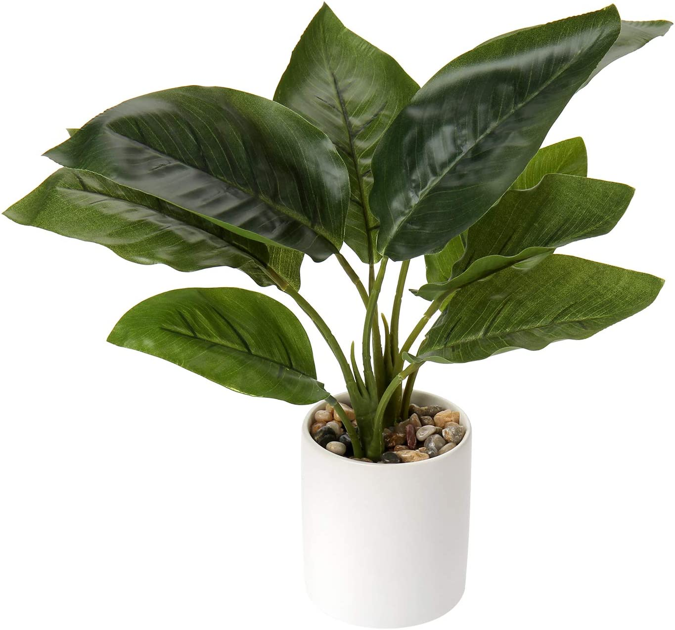 Fake Plants, Artificial Potted Greenery Leaf Plant in White Ceramics Pot Fiddle Leaf Fig Calathea Mini Faux Bonsai Plant Flowers Indoor for Home Office Desk Bathroom Shower Room Garden Decorations