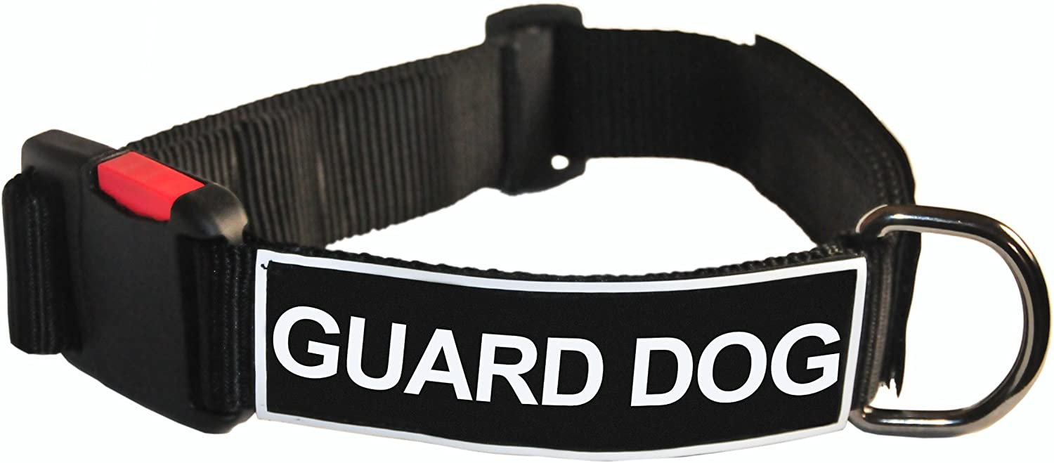 Dean and Tyler Patch Collar , Nylon Dog Collar with GUARD DOG Patches  Black  Size  Large  Fits Neck 26Inch to 37Inch