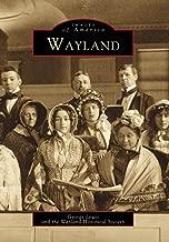 wayland history