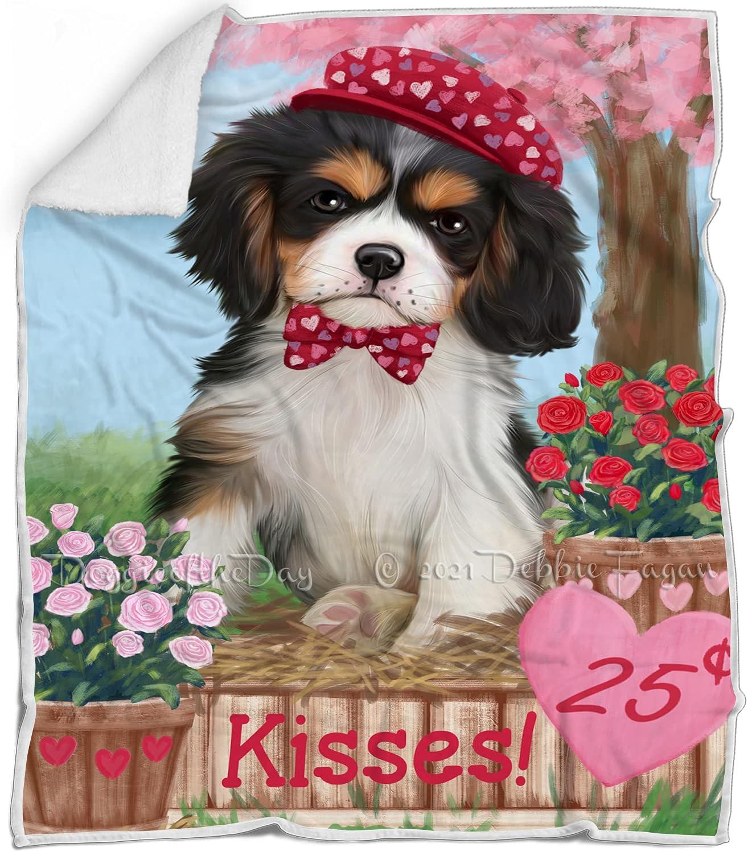 Rosie 25 Cent Kisses Cavalier King Charles Spaniel Charlotte Mall Blanket Free Shipping New Dog -