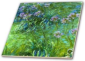 Descubre tu estilo - Azulejos decorativos | Amazon.com