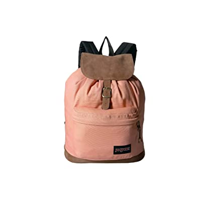 JanSport Haiden (Muted Clay) Backpack Bags