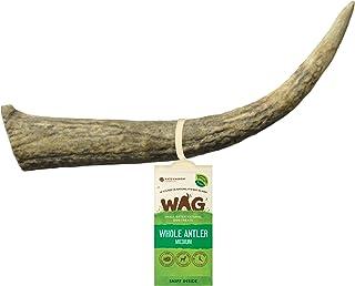 WAG Long Lasting Whole Antler Dog Treat, 4 Pack, Medium